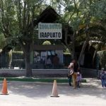 Gran afluencia de visitantes en semana santa en Zoo Irapuato
