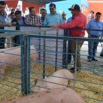Por primera vez en Abasolo se realizó la Expo Feria Porcina