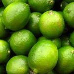 Continuará elevado costo del limón: SE