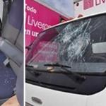 Ladrones golpean a empleados y dañan camioneta de Liverpool en Valle de Sol