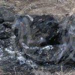 Identifican a calcinado en Irapuato