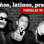 Sureños, presos, latinos…pandillas de Irapuato