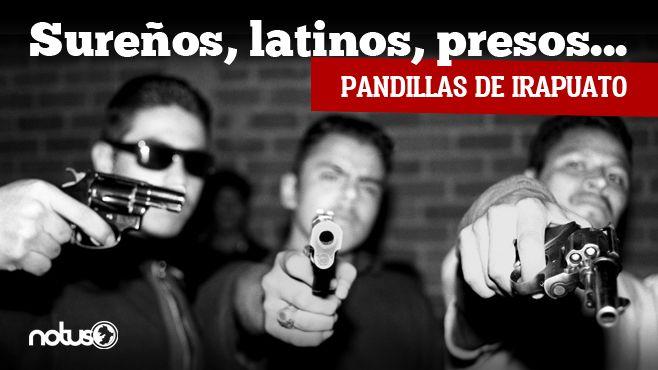 Photo of Sureños, presos, latinos…pandillas de Irapuato