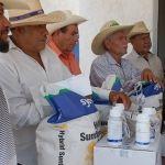 Arranca Programa de Girasol como cultivo alternativo en Pénjamo