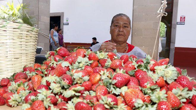 """Photo of """"La Morena"""" 34 años trabajando la fresa"""