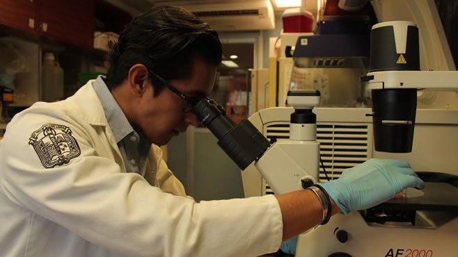 Photo of Investigación de egresado UG da esperanza a la lucha contra la leucemia infantil
