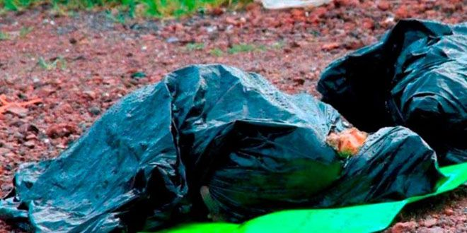 """Photo of Asesinan a campesino y lo """"reparten"""" en bolsas de plástico"""