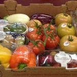 Productos del campo guanajuatense se comercializan en Estados Unidos