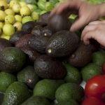 Aguacate mexicano logra precios récord en California