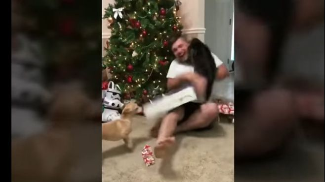 """Photo of Gato """"grinch"""" ataca a su amo cuando abre regalo de navidad"""