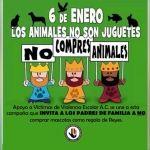 Invitan a Reyes Magos a no comprar animales como regalo para los niños