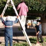Servicios Públicos realiza labores de limpieza en el Jardín Principal