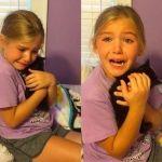 Le regalan un gatito a niña que se emociona hasta las lágrimas