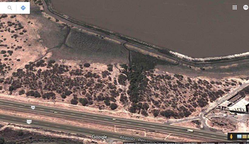 Photo of Google muestra la mancha de árboles de mezquite destruidos en Abasolo