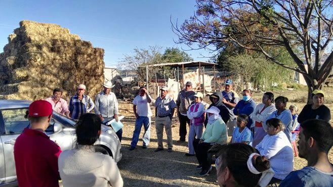 Photo of Gestionan regularización de predios