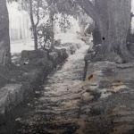 La Calle del Agua; más de 270 años de historia