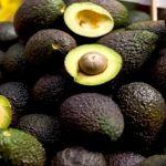 Aguacate se vende hasta en 75 pesos el kilo