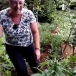 Dos señoras gallegas se sorprenden al encontrar tremenda sorpresa en su jardín