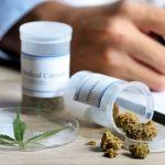 Diputados aprueban el uso medicinal de la marihuana