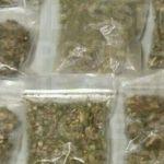 Aseguran en Irapuato a una persona quien dijo menor de edad; estaba en posesión de 35 dosis de mariguana