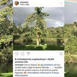 Ximena Navarrete de luna de miel en exclusivo hotel en Nueva Zelanda