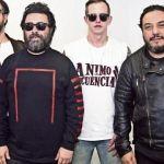 Roban a Molotov sus instrumentos y equipo en el Estado de México