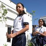 Dona Vagón Verde 25 mil árboles a Irapuato