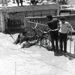 La colonia 18 de Agosto, recuerdo de la inundación de 1973