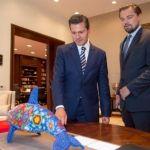En menos de un mes Peña Nieto atiende petición de Leonardo Dicaprio por vaquita marina