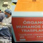 3 guanajuatenses donan sus órganos, salvarán la vida de 10 pacientes en espera