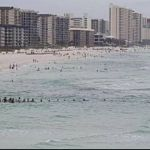 """""""Cadena humana"""" salva de morir ahogada a una familia en playa de Florida"""