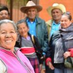 Arranca el segundo periodo de Brigadas Dentales en los 46 municipios de la entidad