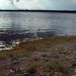Agua de La Purísima en análisis para consumo de irapuatenses
