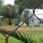En el olvido, Parque Ecológico de Irapuato