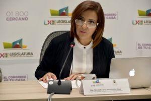 Diputada Beatriz Hernández Cruz
