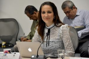 Diputada Libia García