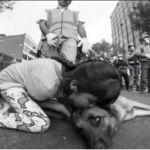Noble gesto de agradecimiento de niña a perro rescatista