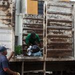 Se descomponen 6 camiones de aseo público; afectan a colonias