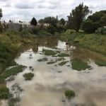 Moscos y escombros a las orillas del Cuarto Cinturón Vial