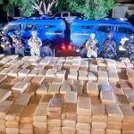 Decomisan más de cinco toneladas de mariguana en Tamaulipas