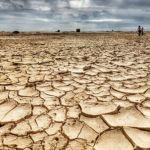 15 mil científicos advierten sobre irreversible catástrofe ambiental
