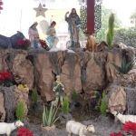 Disfruta el espíritu navideño del centro de Irapuato