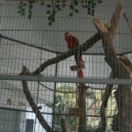 El cuidado y alimentación de animales del Zoológico de Irapuato