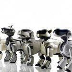 """Sony va por muchos robots tras su perro """"Aibo"""""""