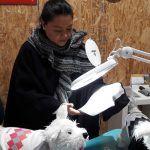 La innovación y creatividad son el colmillo de mujer guanajuatense para diseñar moda para mascotas