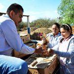 DIF Estatal Fortalece la Economía de las Familias Guanajuatenses con Proyectos Sustentables