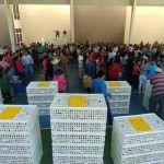 600 familias neopoblanas se benefician con Programa Avícola