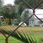 En breve, reabrirán Parque Ecológico de Irapuato