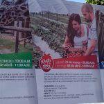 Semana Santa: Saborea fresas, visita el zoológico o degusta tequila