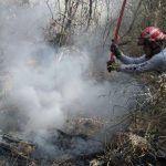Combaten incendio forestal en comunidad de San Lorenzo, en Celaya